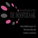 Kapsalon de Hoofdzaak